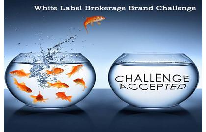 Starting Your Own Brokerage: Need to differentiate Your Brand